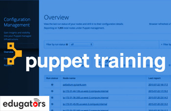 puppet-training-course.jpg